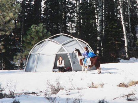 winter dome llama 3